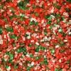 Wilton Holiday Sprinkle Sugars Mix