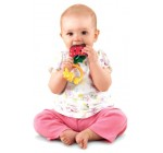 Fisher-Price Sweet Treats Teether, Strawberry