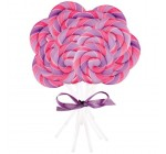 Pink and Purple Swirl Lollipop (16) Party Supplies